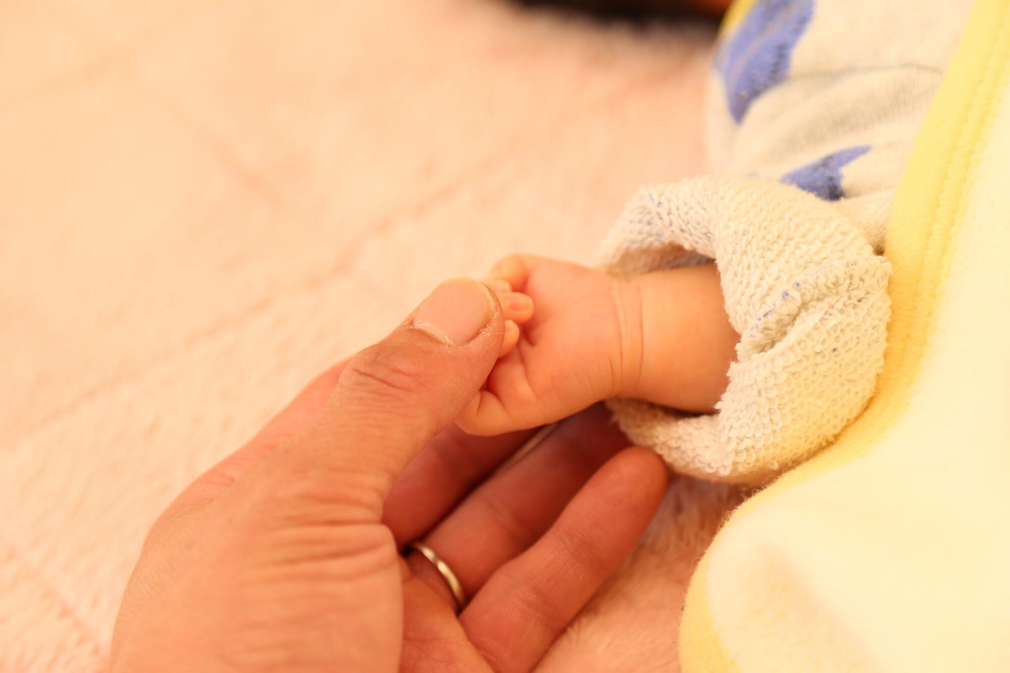 親の手と子の手