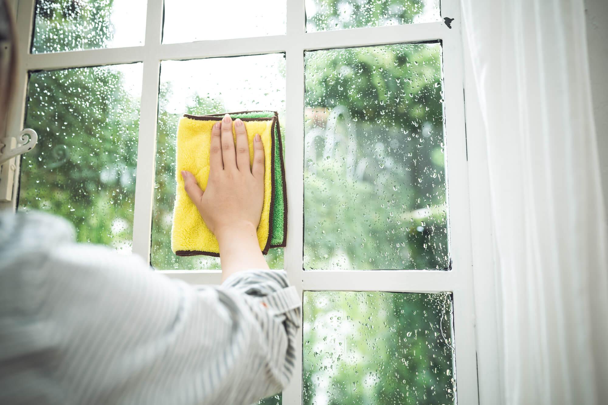 窓を拭く姿